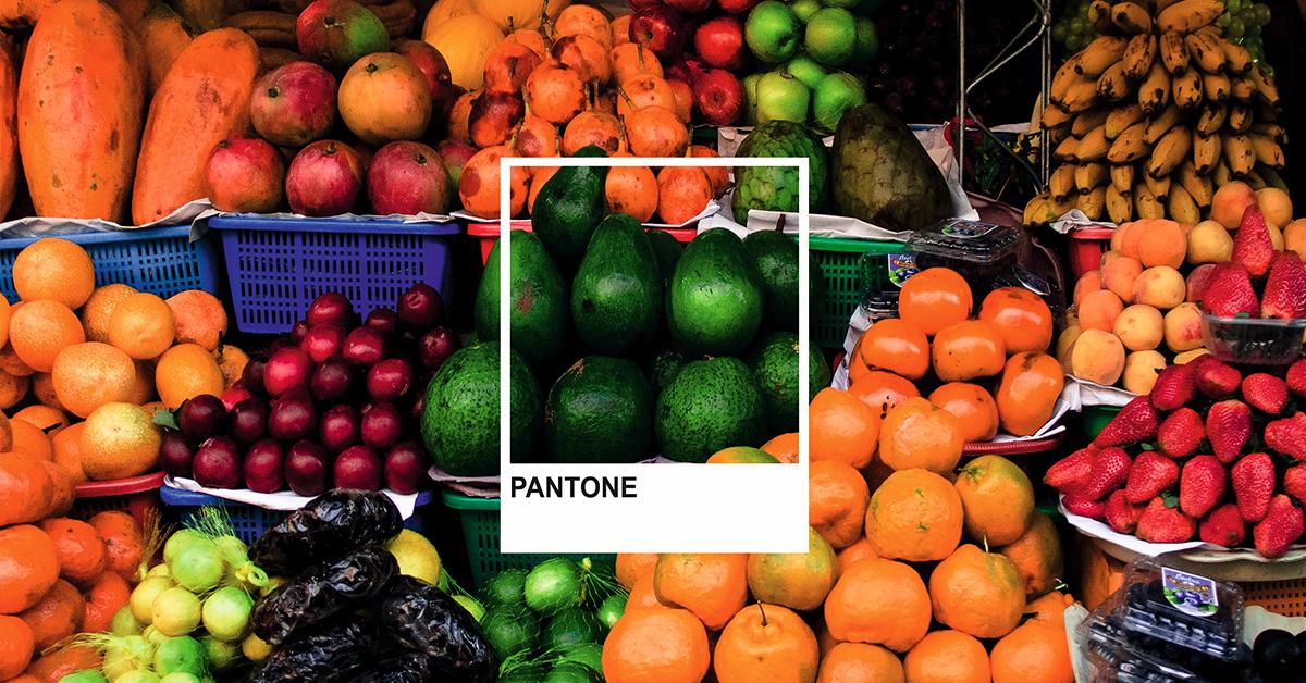 Guía Pantone